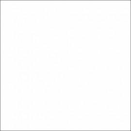Farba Eco Revolution Spray/ 5021 Turkusowa-1007