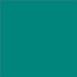 Wzornik Oracal 970 Wachlarzyk-2143